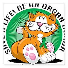 "Organ-Donor-Cat Square Car Magnet 3"" x 3"""