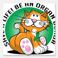 "Organ-Donor-Cat Square Car Magnet 3"" x 3"""