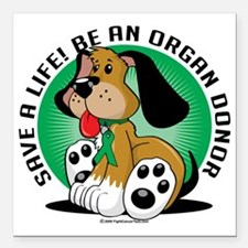 "Organ-Donor-Dog Square Car Magnet 3"" x 3"""