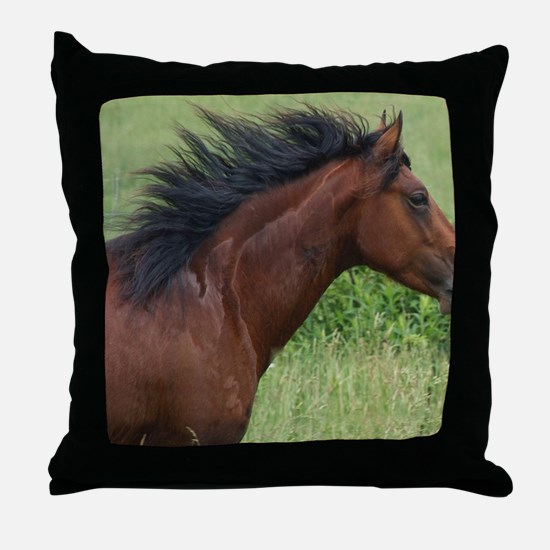 IMG-0062 Note Card Throw Pillow