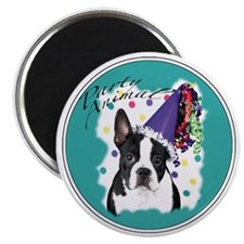 boston terrier party animal Magnet