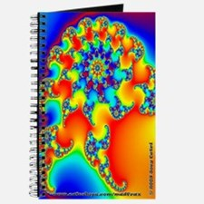 Fractal R~12 Journal