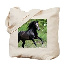Bayamo Horiz 16x20 Tote Bag