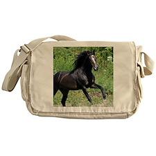 Bayamo Horiz 16x20 Messenger Bag