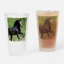 Bayamo Horiz 16x20 Drinking Glass
