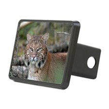 6x4_pcard 3 Hitch Cover