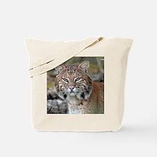 11x11_pillow 3 Tote Bag