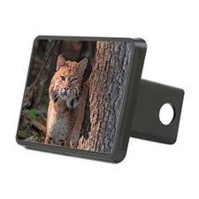 6x4_pcard 2 Hitch Cover
