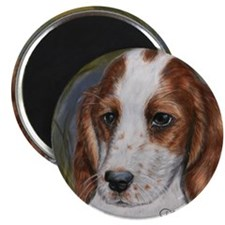 Red and White Setter Magnet