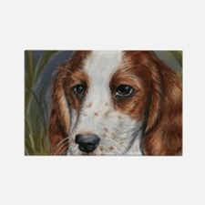 Red and White Setter Rectangle Magnet