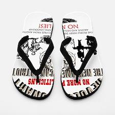 Revolutionary Flip Flops