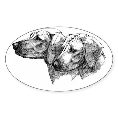 Rhodesian Ridgeback Head Studies fo Sticker (Oval)