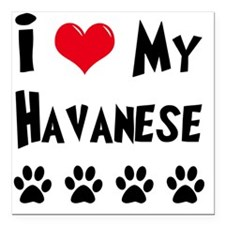 "I-Love-My-Havanese Square Car Magnet 3"" x 3"""