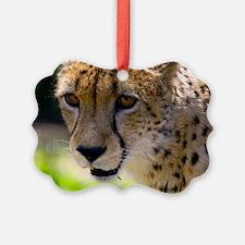 (6) Cheetah 9120 Ornament
