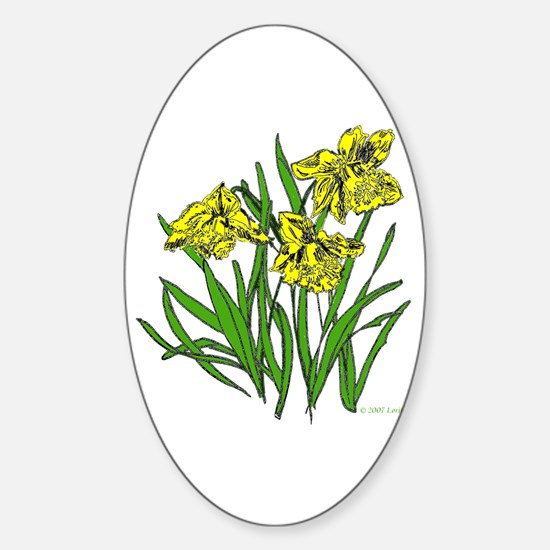 Daffodils Oval Decal