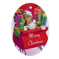 pitbull puppy Christmas Card2 Oval Ornament