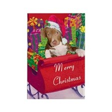 pitbull puppy Christmas Card2 Rectangle Magnet