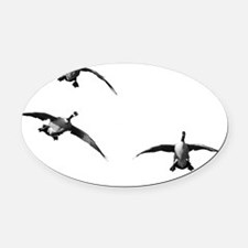 D1283-040bw Oval Car Magnet