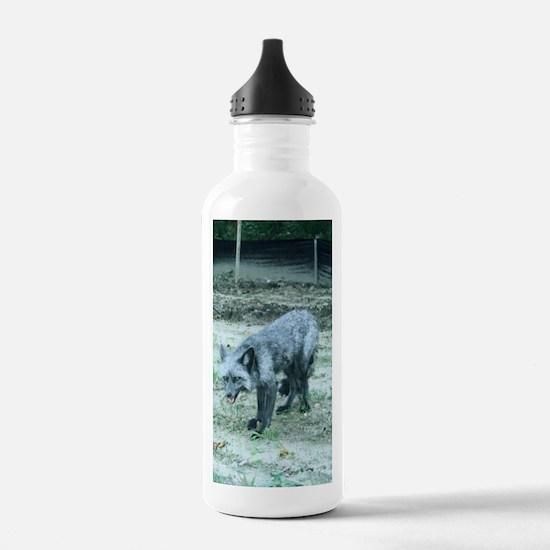 FoxMGrtg5x7 Water Bottle