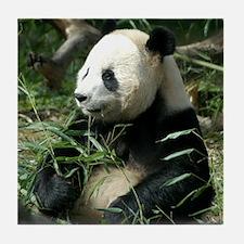 Panda Profile Tile Coaster