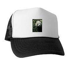 Panda Face Eating Cap