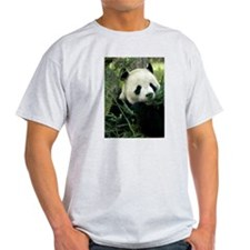 Panda Face Eating Ash Grey T-Shirt