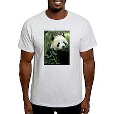 Panda Face Eating Ash Grey T-Shirt