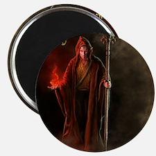 Elven Wizard (male) Shirt Magnet