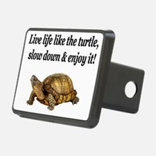 turtle 6 Hitch Cover
