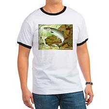 Salmon T