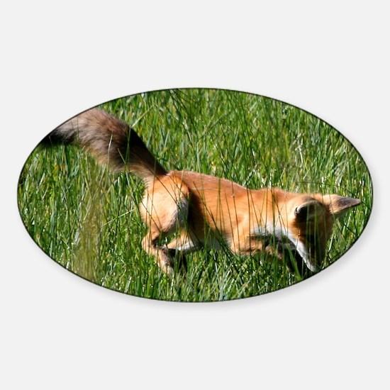 Red fox Sticker (Oval)