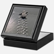 Baby Turtle Keepsake Box