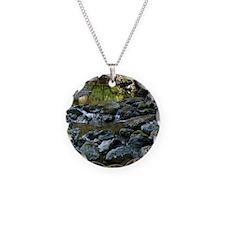 DSCF7738-muir-woods-creek-cr Necklace