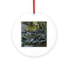 DSCF7738-muir-woods-creek-crop-1050 Round Ornament