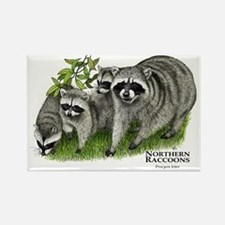Northern Raccoons Rectangle Magnet
