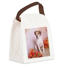 IMG_7413 Coaster 3 Canvas Lunch Bag