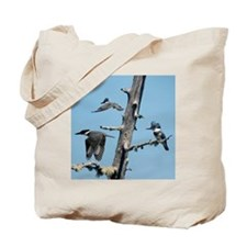 11x11_pillow 2 Tote Bag