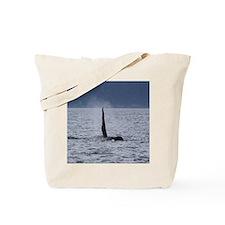 IMG_3477 Tote Bag