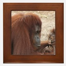 Orangs Framed Tile