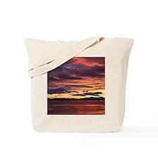 IMG_1531 Tote Bag