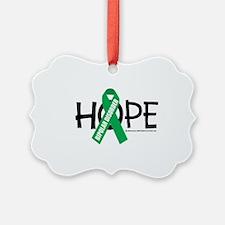 Bipolar-Disorder-Hope Ornament