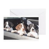 Pointerrescue Greeting Cards (10 Pack)