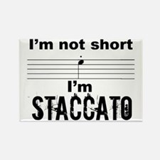Staccato Rectangle Magnet