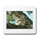 Great-Horned Owlets Mousepad