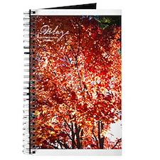 Blaze Journal