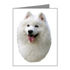 Samoyed Portrait Note Cards (Pk of 20)