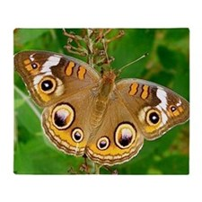 Buckeye Butterfly Photography Note C Throw Blanket