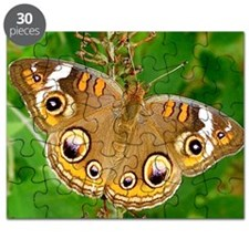 Buckeye Butterfly Photography Note Card Puzzle