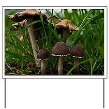 (4) We Three Mushrooms 3 Yard Sign