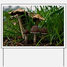 (6) We Three Mushrooms 3 Yard Sign